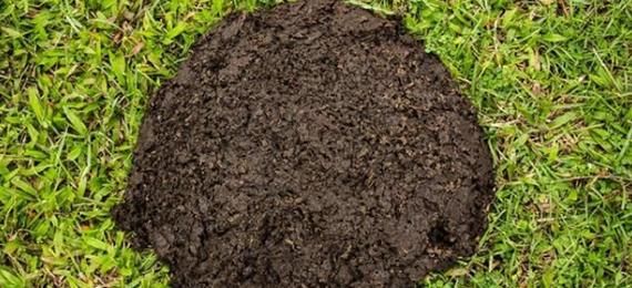 organic fertilizer raw material used for disk granulator